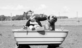 dětský kočárek